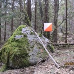 treningslop-post-2013-05-02