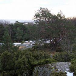 Vinter-Jukola fra Stavernshallen onsdag