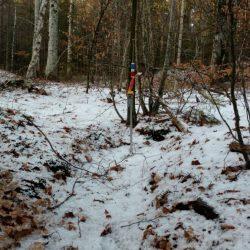 Post på gravfeltet ved Brunla. Vinter-Jukola #9 2019